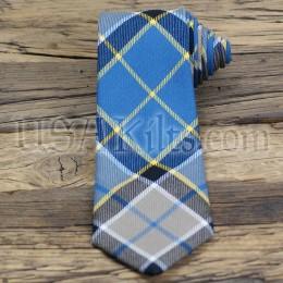 Washington State Seal Tartan Tie